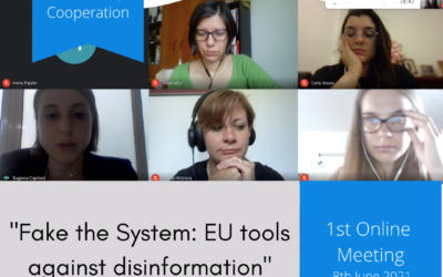 """""""Fake the system: EU tools against disinformation"""""""