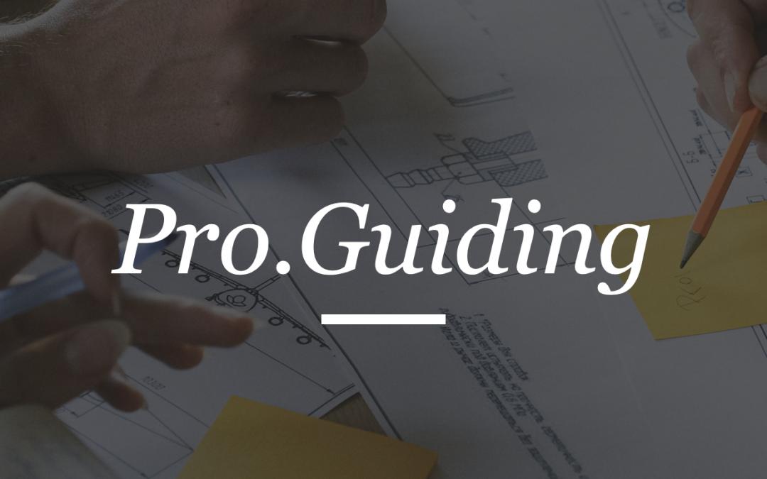 KA2 EDU.GUIDANCE: What is Pro.Guiding?